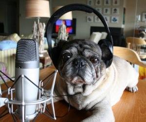 pug-podcast